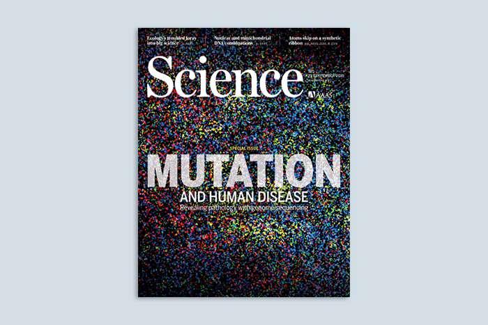 Studie in Science: Mädchenbeschneidungen eher aufgrund privater Überzeugung als sozialer Normen
