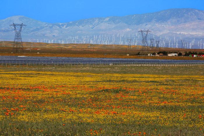 Wer spart am meisten Strom? Wettbewerb mit anderen beeinflusst das individuelle Energieverbrauchsverhalten am stärksten