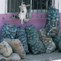 Behavioral Economics und Recycling: Biases, Tricks und falsche Schlüsse