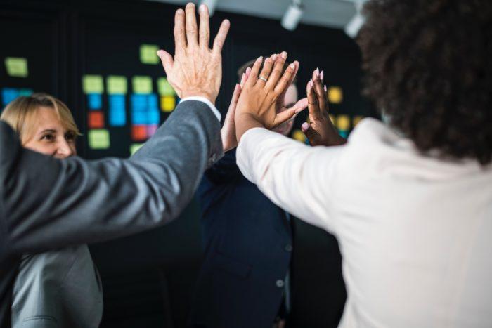 Entscheide in Gruppen: Wie sich Herdentiere gegenseitig in ihren Ansichten bestärken