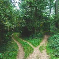 Studie: Mensch und Maschinen gehen unterschiedlich mit komplexen Entscheidungen um