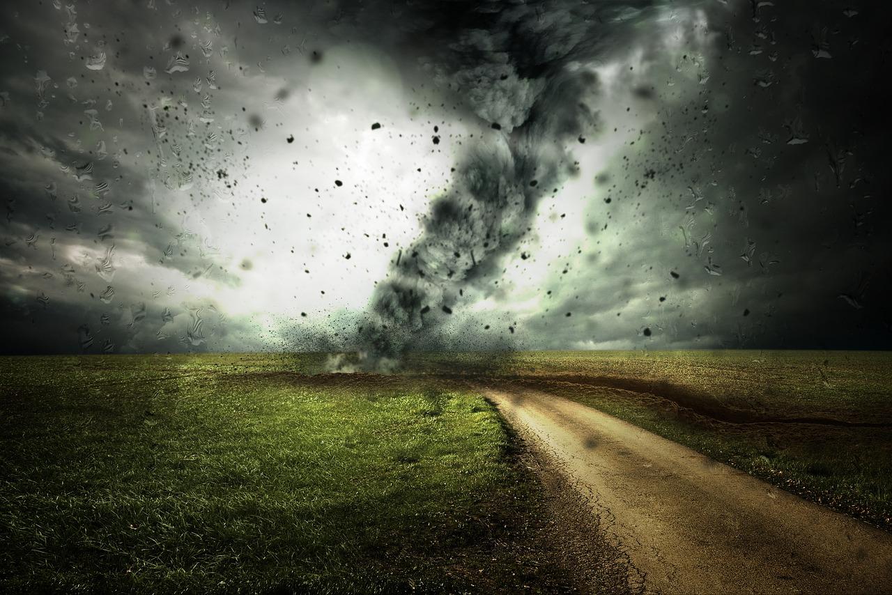 Mehr als 3000 Ökonomen fordern Klimasteuer